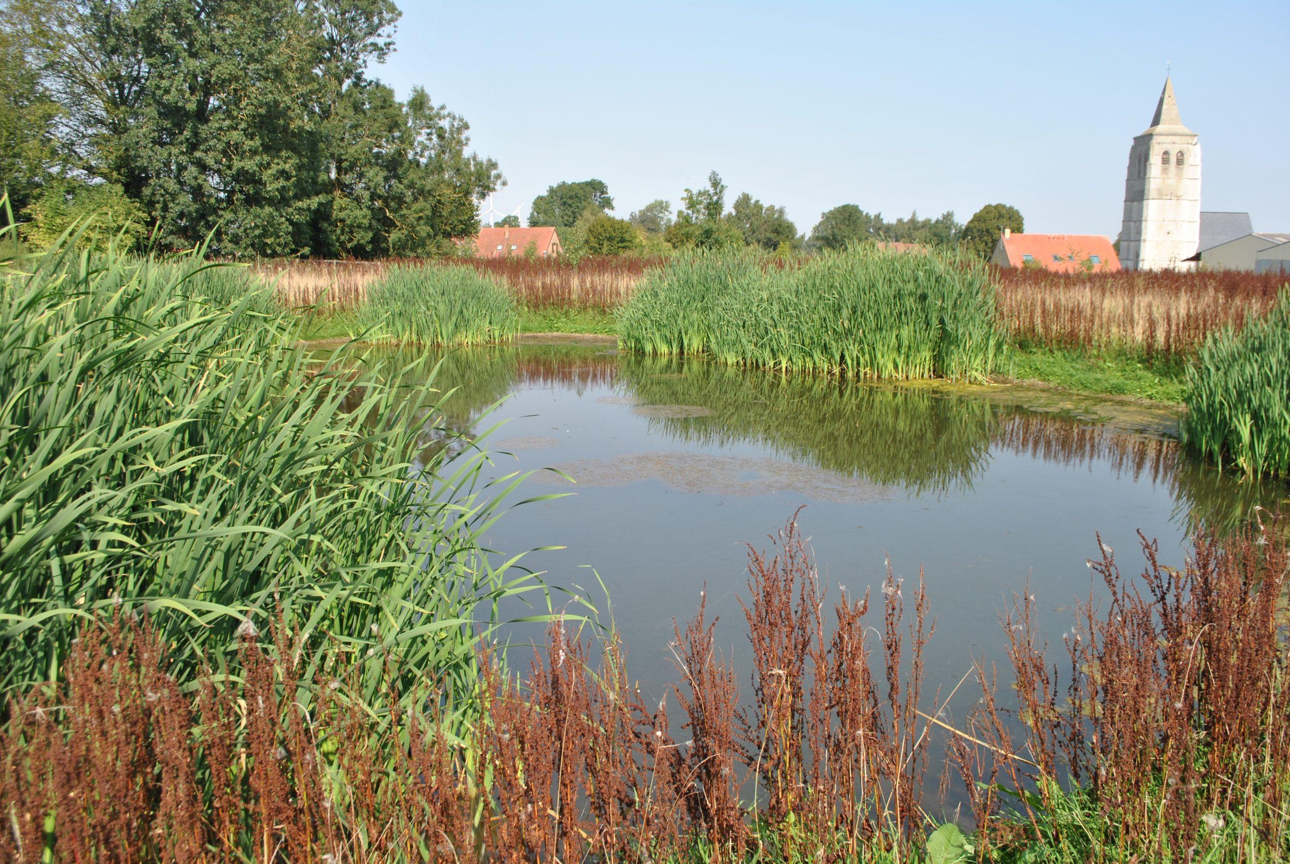 réserve de biodiversité