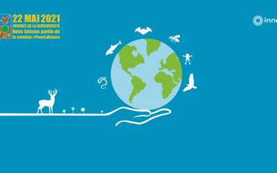 Journée internationale de la biodiversité : quel est l'impact des énergies renouvelables ?